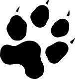 empreinte-de-chien