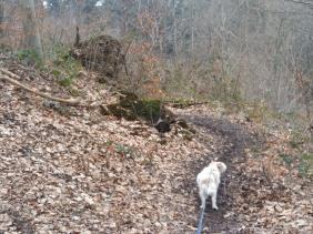 3. Le chemin semble s'éloigner de la grotte, ma&is c'est normal