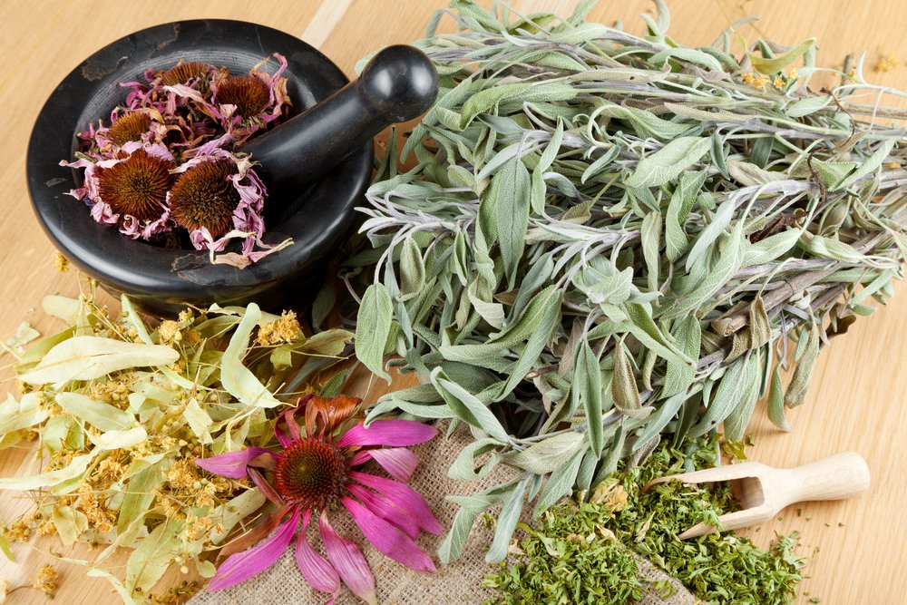 http://selection.readersdigest.ca/maison/jardinage/8-plantes-medicinales-cultiver-la-maison/view-all/