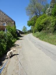 Monter la route de Sassor